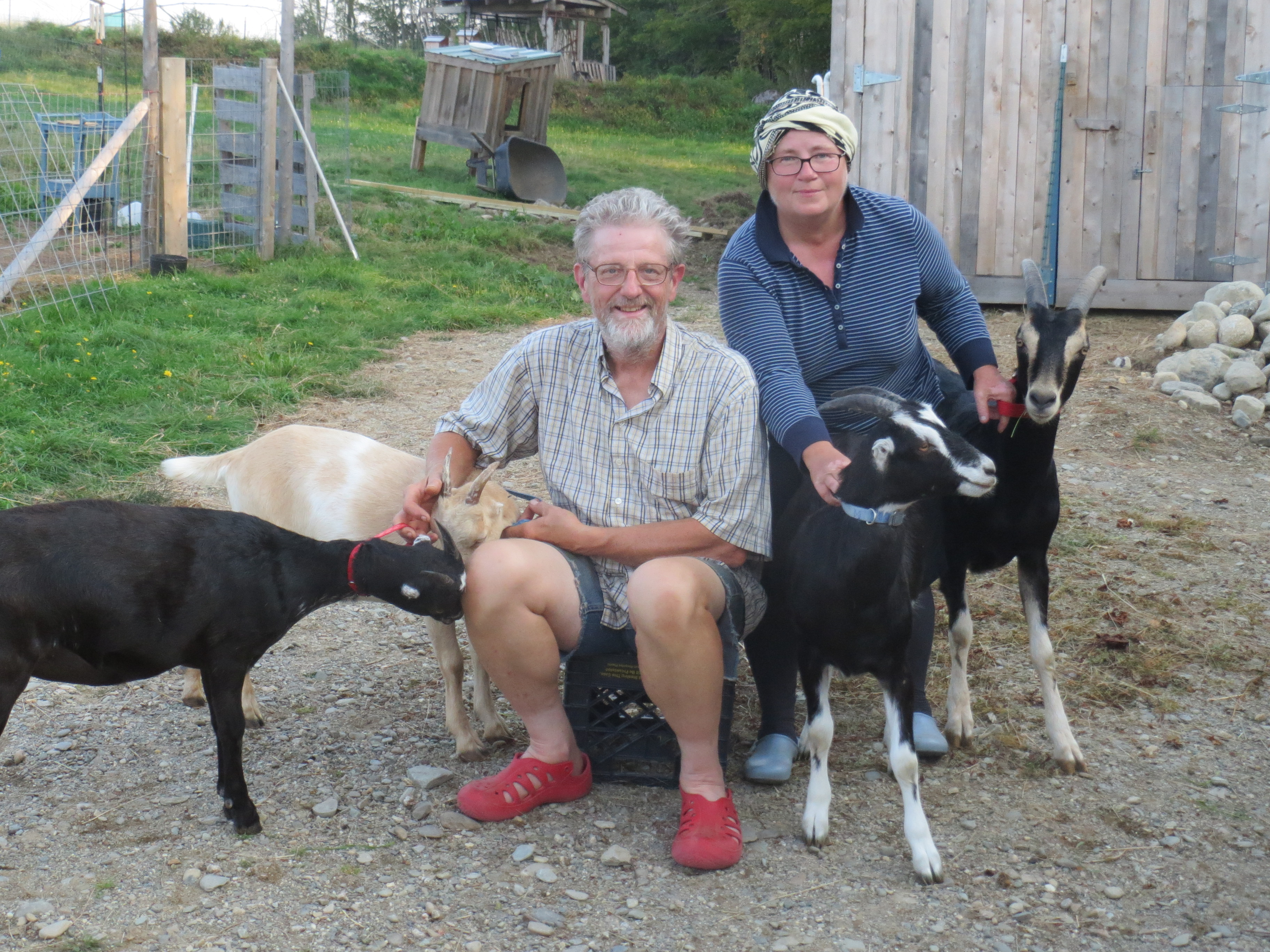 Now They Re Up In Maine Homesteading What John Guy Laplante