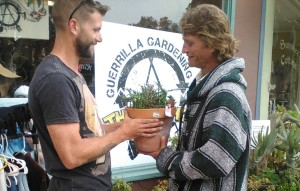 Taylor Newton and John looking over a succulent. I call Taylor a scientist turned social worker.